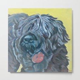 Black Russian Terrier Dog Portrait Metal Print