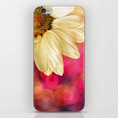 Daisy - Golden on Pink iPhone & iPod Skin