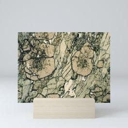 Garnet Crystals Mini Art Print