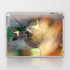 Backyard Friend Laptop & iPad Skin