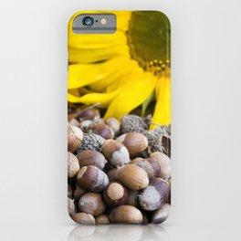 Autumn Acorns 8 iPhone Case