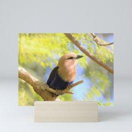 Sunshiny  Roller Bird by Reay of Light Photography Mini Art Print
