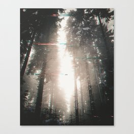 DISTORTED Canvas Print