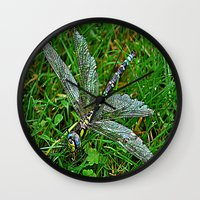 dragonfly Wall Clocks featuring dragonfly by  Agostino Lo Coco