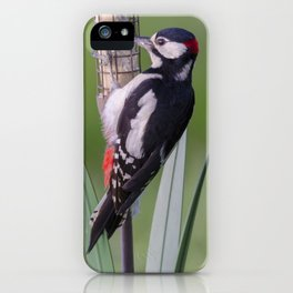 Great Spotted Woodpecker 2 iPhone Case