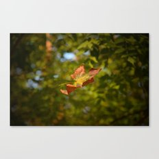 Beautifall Canvas Print