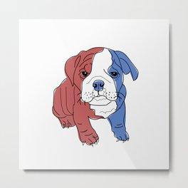 English Bulldog Puppy (red/white/blue) Metal Print