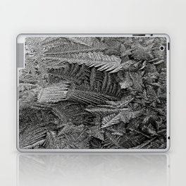 Icy Feathers Laptop & iPad Skin
