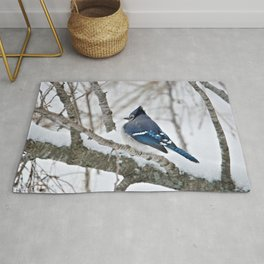 Winter's Cold (American Blue Jay) Rug