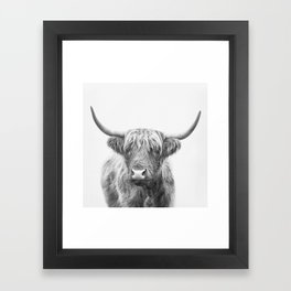 Highland Bull Framed Art Print