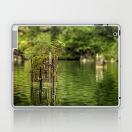 Lonely pine sprout on an old tree trunk in a lake Laptop & iPad Skin