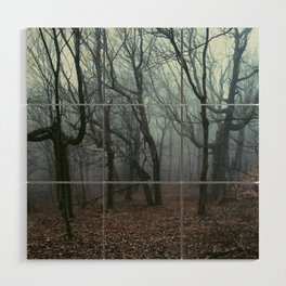 Foggy Max Patch Woods Wood Wall Art