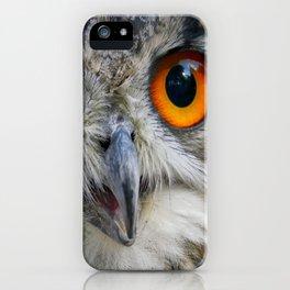 Owl Close up iPhone Case