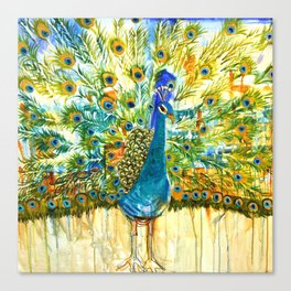 Peacock Pout, painting Canvas Print