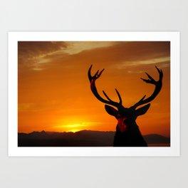 Highland Stag Art Print