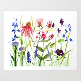 Botanical Colorful Flower Wildflower Watercolor Illustration Art Print