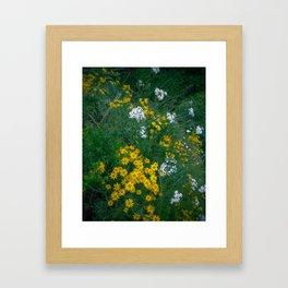 Flowers On the Edge Framed Art Print