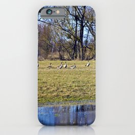 POETRY of WILDNESS iPhone Case