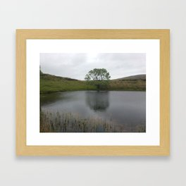 Irish Tree by Lake Framed Art Print
