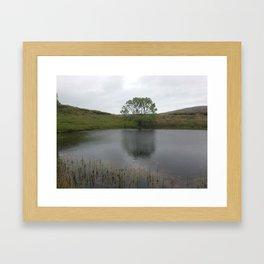 Irish Tree by Lake Framed Art Print