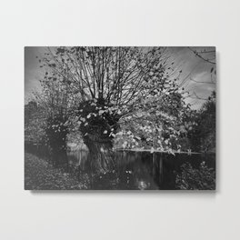 Ghost in the willow Metal Print