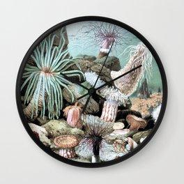 Ocean Life Wall Clock