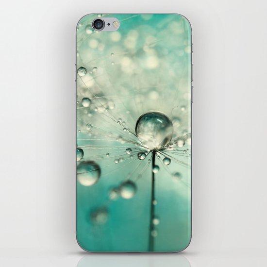 Single Dandy Starburst iPhone & iPod Skin