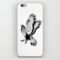 sparrow iPhone & iPod Skins featuring Sparrow by akreon