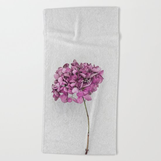 Pink Dried Hydrangea Beach Towel