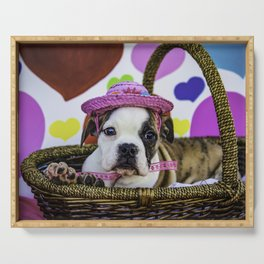 English Bulldog Puppy Wearing a Pink Straw Hat Sitting in a Basket in front of Rainbow Hearts Serving Tray