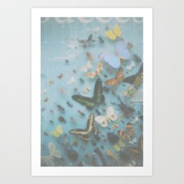 Butterflies and other insects. Art Print