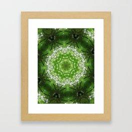 Tree 1 Framed Art Print