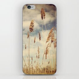 Tall Field by the Ocean iPhone Skin