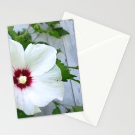White Hibiscus Flower Ruffle Stationery Cards