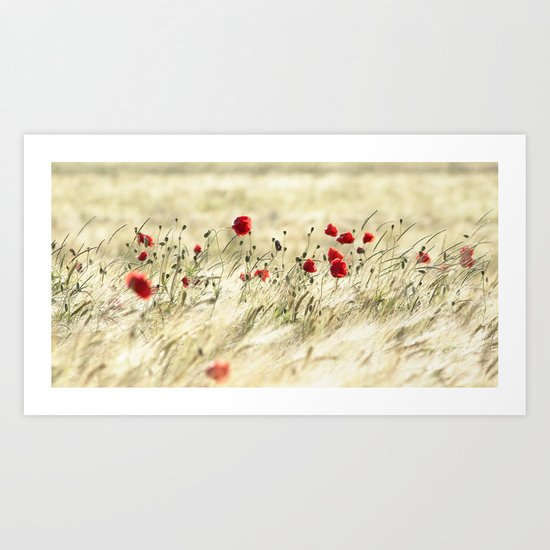 A POPPY  POEM Art Print