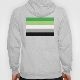Aromantic Flag Hoody