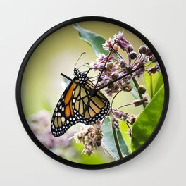 Monarch Butterfly on Flower Wall Clock