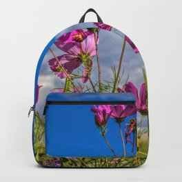 Cosmos Sky Backpack