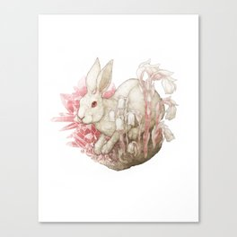 White Hare and Rose Quartz Canvas Print