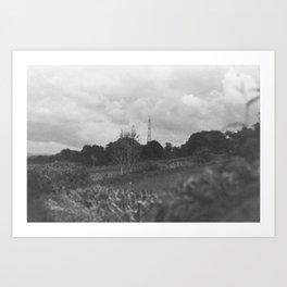 A Field in Scotland Art Print