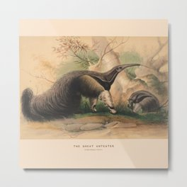 The Great Anteater Metal Print