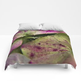 hydranjea pink and green Comforters