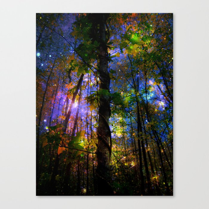 Forest of the Fairies Night Canvas Print