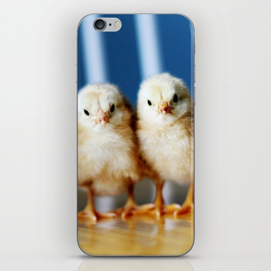 buckeye chicks iPhone & iPod Skin