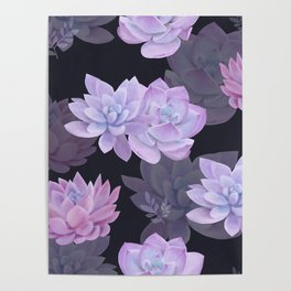 Succulents and lotuses Poster