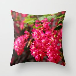 Bee and Blood Currant Ribes Sanguineum std Throw Pillow