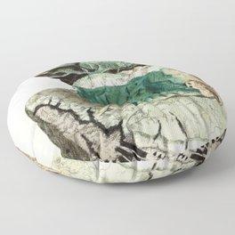 Vintage Mineralogy Illustration Floor Pillow