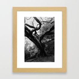 The Black Tree Framed Art Print