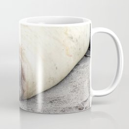 Portrait of a sleeping Elephant Seal Coffee Mug