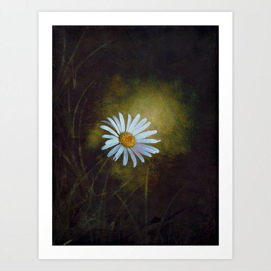 Marquerite in the darkness Art Print